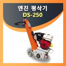 DS-250